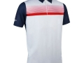 Printed Stripe Polo navy-whi-garnet