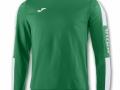 Champion IV Sweatshirt-gre-whi
