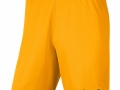 Park-III-Shorts_uni-gold