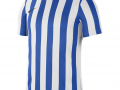 Striped-Division-IV_whi-roy